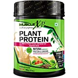MuscleXP Plant Protein - Natural Protein Powder with Pea Protein, Herbal and Vegetable