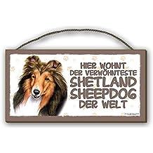 HIER WOHNT - SHETLAND SHEEPDOG - HOLZSCHILD MDF 25x12,5 cm 47 HUNDESCHILD