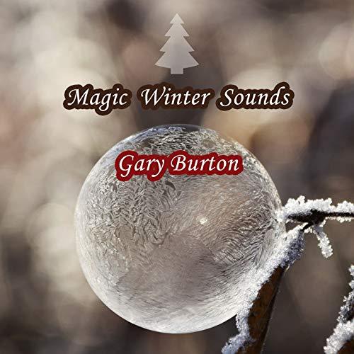 Magic Winter Sounds Burton Magic