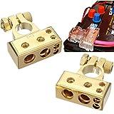 Qiorange 1 Paar 4/8 Awg Batterieklemme Positiv und Negativ Battery Terminal Autobatterie Klemmen (Type B Set Gold)