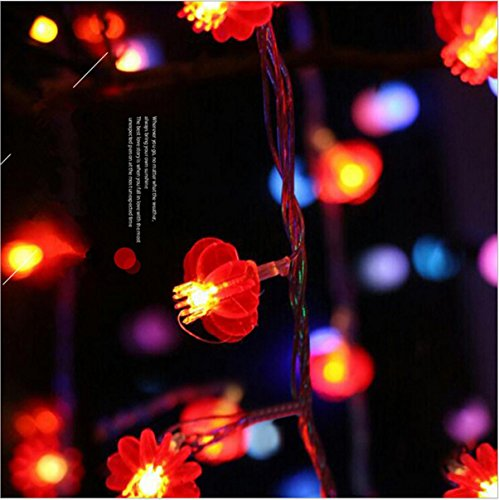 Plug-in Pendelleuchte-lampen (LED Schreibtischlampen LED New Year Laterne String Lichter , red lanterns -100 meters high quality plug-in money)