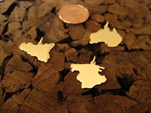 Zierliche Wunsch Landkarten Anhänger in 333er Gelbgold (ein Kontinent)