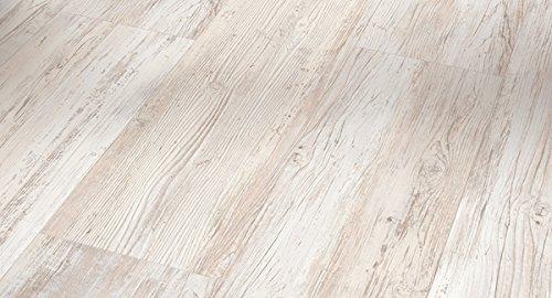 PARADOR Elastische Bodenbeläge Vinyl Basic 30 Pinie Skandinavisch weiß Landhausdiele gebürstete Holzstruktur mit HDF-Trägerplatte - Paket a 1,83m²
