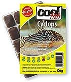 Cool Fish Cyclops, 15 x 100g-Blister, Fisch-Frostfutter, Aquarium, Aquaristik, Fischfutter