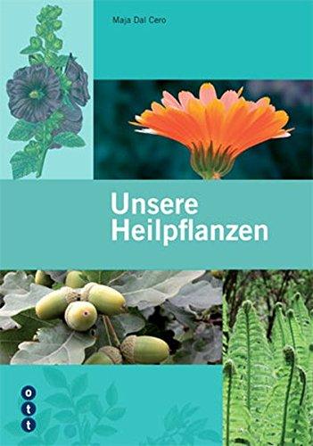 Unsere Heilpflanzen: «Der neue Flück» - Die 150 wichtigsten einheimischen Arzneipflanzen
