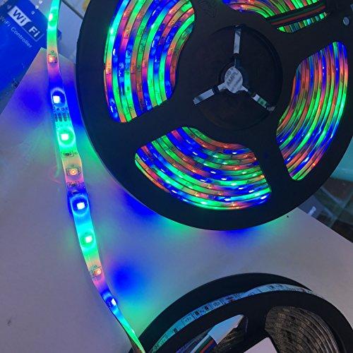 Timewanderer Tira de Luz 5M/16.4ft 300 LEDs 3528 SMD DC 12V LED Flexible IP65 Impermeable Decoración para la Boda la Navidad, Jardín, Iluminación DIY y Fiestas (RGB)