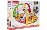Fisher-Price Luv U Zoo Musical Mirror Gym. for sale  Delivered anywhere in Ireland
