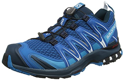 3d Ultra Trail Running-schuh (Salomon Herren XA Pro 3D Traillaufschuhe, Blau (Mykonos Blue/Reflecting Pond/White), 42 2/3 EU)