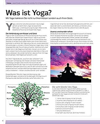 Yoga: Anatomie-Guide für gezielte Fitnessübungen