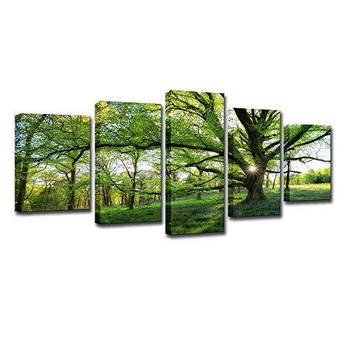 Unbekannt Leinwand Malerei Kein Rahmen HD Foto Wand Kunst 5 Stück Wald Grünen Baum Landschaft Poster Freizeit Hintergrund Wandbild Wohnzimmer Esszimmer Büro,L
