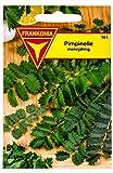 Frankonia 161 Pimpinelle, Samen