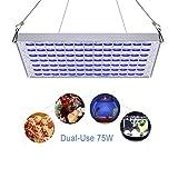 Pflanzenlampe LED Aquarien TOPLANET 75w Grow Licht Blau Weiss 91:78 for Pflanze Germination Aquarium Fisch Tank Wasser Gras Wachstum