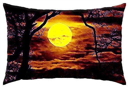 """iRocket - MOON BEAMS PEIRCING THE DARK VEIL OF THE FOREST - Throw Pillow Cover (24"""" x 24"""")"""