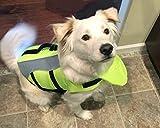 Vivaglory Hunde-Schwimmweste Float Coat Wassersport Schwimmhilfe Rettungsweste für Hunde Haustier Mit Griff und Reflektoren - 6