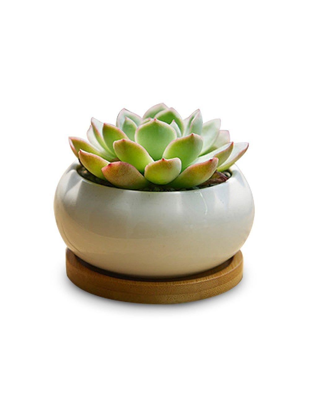 small ceramic planter box for indoor house plants planting. Black Bedroom Furniture Sets. Home Design Ideas