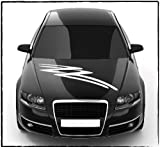 DD Dotzler Design - 2405_15 - Aufkleber für Motorhaube oder Heckscheibe - Breite 80 x 14 cm - Autodekor Autoaufkleber Car Tattoo Aufkleber Auto Car Tribal