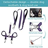 Lukovee Doppel-Hunde-Sicherheitsgurt-Leine Set, abnehmbare Doppel-Autositzgurt, Haustierleine für Zwei Hunde, verstellbar, elastisch, reflektierende Streifen