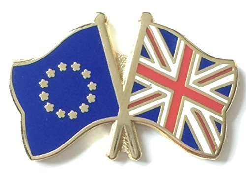 United Kingdom Union Jack and European Union EU Friendship Flag Pin Badge