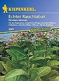 Portal Cool Las semillas del paquete: Kiepenkerl - genuino Fumar 3693 auto-cultivo de renta alta