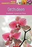 Orchideen - Grundlagen, Auswahl und Pflege: Orchideeenzauber für die Wohnung (Meine Zimmerpflanzen)