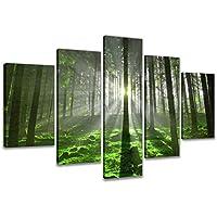 200 x 100 cm cuadro en lienzo selva 6312-VKF –Cuadro impresión, Cuadro decoración