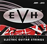 Fender 022-0150-042 Premium Saiten 09''-042''