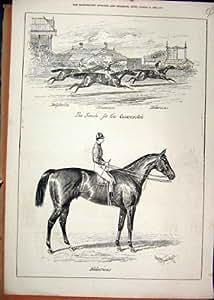 Macaron 1877 Hilare de Cesarewitch de Course de Chevaux