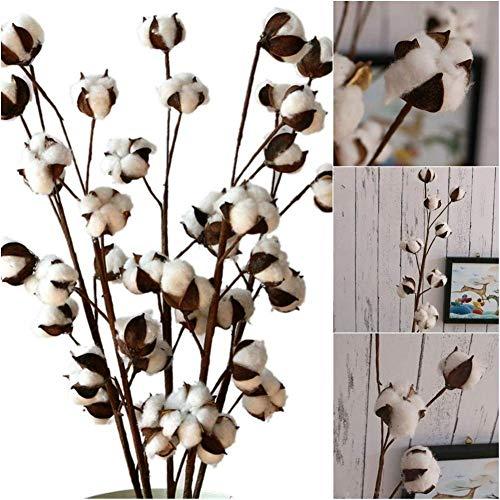10 pcs fiori artificiali fiori secchi cotone diy decorativo fiore finto fiore simulazione reale naturale fiori artificiali per decorazioni, matrimoni, feste, uffici, ristoranti