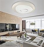 kreativ Haushalt Deckenleuchte LED modernen minimalistischen Wohnzimmer Deckenlampe warme Atmosphäre und kreative Kunst Ringlampe Schlafzimmerlampe Restaurant A+++ ( Farbe : 43cm (monochrome White) )