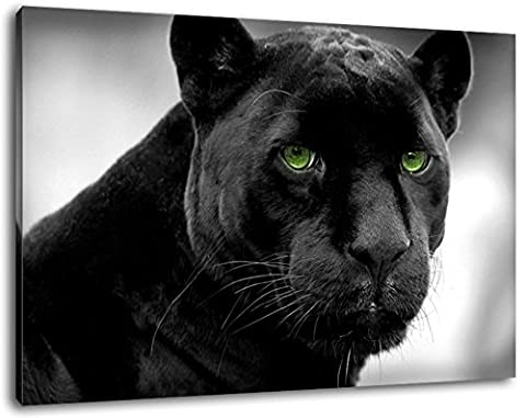 Black panther with green eyes Size: 100x70 cm covered painting on canvas, huge XXL images completely finished and framed with stretcher, Art print on wall picture with frame, cheaper than painting or picture, no posters or