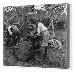 Toile Fabrication de cidre, octobre 1924