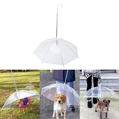 E Kostüm Dog Walk (dairyshop transparent PE Pet Regenschirm, klein Hund Regen Gear mit Hund)