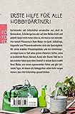 Hausbesuch vom Pflanzenarzt: Tipps und Tricks für Garten und Balkon - René Wadas