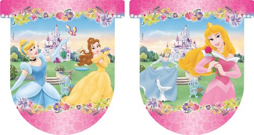 Disney Princess Amscan versilbert Journey Banner-teilig (Princess-banner Disney)