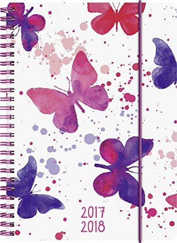 Preisvergleich Produktbild Brunnen 1072985048 Schülerkalender Schmetterling (1 Woche in 2 Seiten, August 2017 bis Juli 2018)