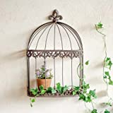 Wall Mounted Bird Cage Shrub Display - An Unusual Way To Display Your Newest Plants - W29cm x H44cm