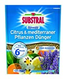 SCOTTS Substral Osmocote® Citrus & mediterraner Pflanzen Dünger - 1.5 kg