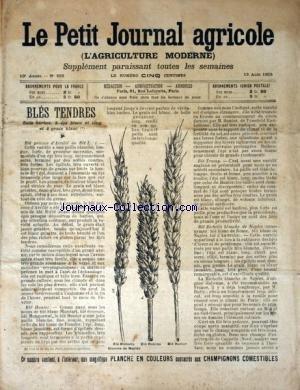 PETIT JOURNAL AGRICOLE (LE) [No 502] du 13/08/1905 - BLES TENDRES / SANS BARBES A EPIS BLANC ET LONG ET A GRAIN BLANC - LES CHAMPS - LA FERME - LES VIGNES - PETITES CULTURES par Collectif