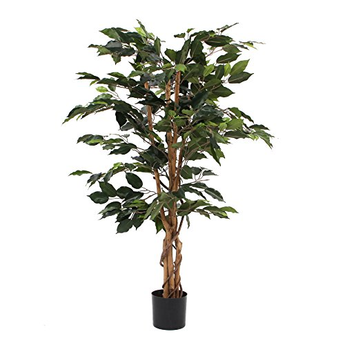 MICA Decorations Ficus Benjamin im Kunststofftopf Kunstpflanze