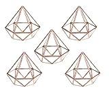 MagiDeal 5pcs Geometrisches Glas Terrarium Box Glas Sukkulente Pflanzen Pflanzgefäß Deko Diamant Form