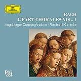 J.S. Bach: Für Freuden lasst uns springen, BWV 313