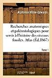 Image de Recherches anatomiques et paléontologiques. Atlas, Tome 1: pour servir à l'histoire des oiseaux fossiles de la France