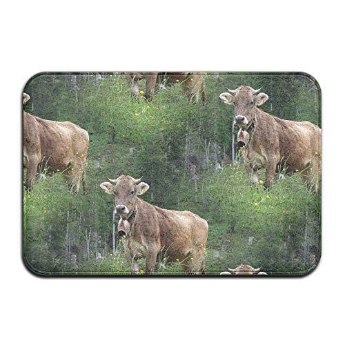 MSGDF Non-Slip Bath Mat, Bathroom Rug Mat, Real Swiss Cow Brown Senior Design Area Rugs for Living Room,15.7X23.6 Inches(40cmX60cm)