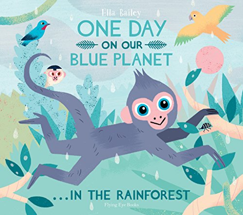 One Day on our Blue Planet In the Rainforest