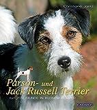 Parson- und Jack Russell Terrier: Große Hunde im kleinen Körper