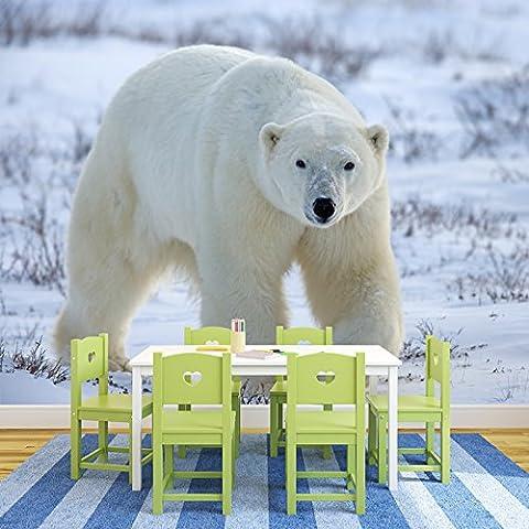 Polar Bear, Hiver, Neige, Pôle Nord animale murale Nature Photo Wallpaper disponible en 8 tailles Moyen