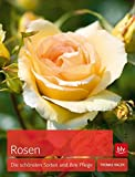 Rosen: Die schönsten Sorten und ihre Pflege