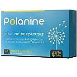 Santé Verte Polanine - 30 Comprimidos