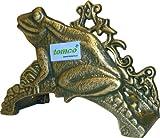 Tomco Wand-Schlauchhalter FROSCH grün/gold