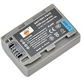 DSTE Rechange Batterie pour Sony NP-FP50 DCR-30 DCR-DVD103 DCR-DVD105 DCR-DVD105E DCR-DVD202E DCR-DVD203 DCR-DVD203E DCR-DVD205 DCR-DVD205E DCR-DVD304E DCR-DVD305 DCR-DVD305E DCR-DVD403 DCR-DVD403E